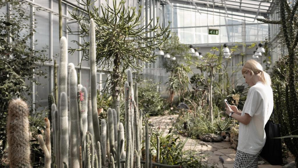 Tallinnan kasvitieteellinen puutarha. Nainen ottaa kuvaa kasveista. Kuva Visit Estonia.