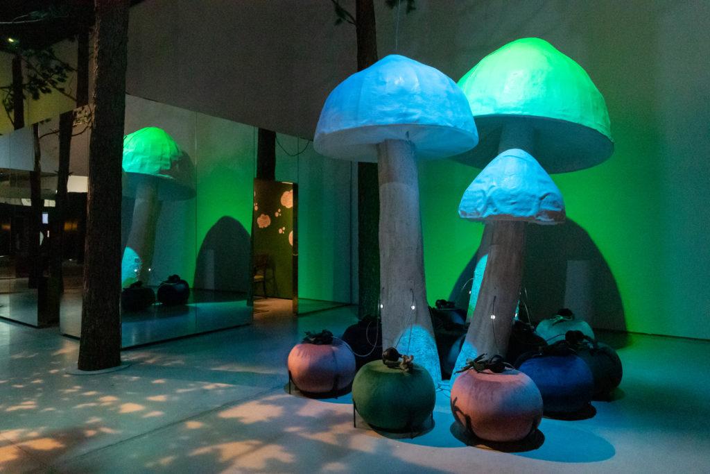 Kuva näyttelystä. Värimaailma on sinisen vihreä, keskellä kuvaa erikokoisia paperimassasta valmistettuja sieniä ja kasvien varjoja lattiassa.