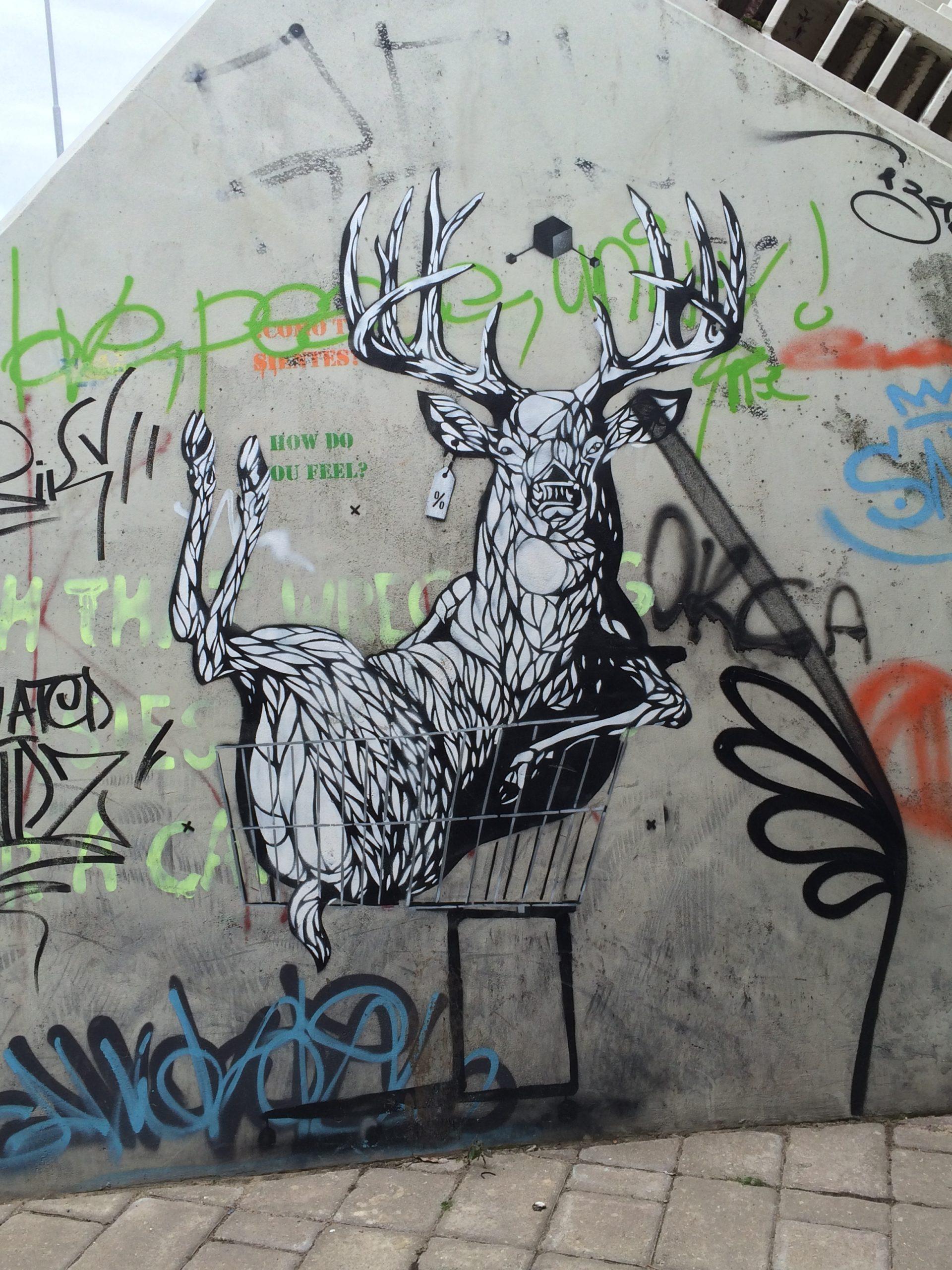 Katutaidetta Tartossa. Ostoskärreissä istuva hirvi, mustavalkoinen graffititeos.